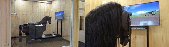 Horse Simulator 3