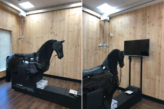 Stunning Horse Riding Simulator At Abbey Court School